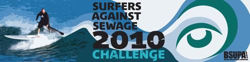 SAS 2010 Challenge Banner